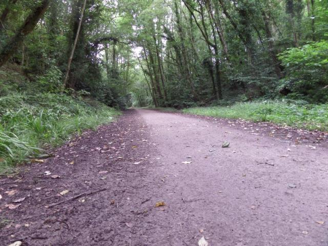 The lowdown on the Castleman trail.