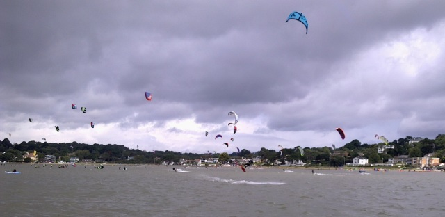 Just a small selection of the billion kites out there today!