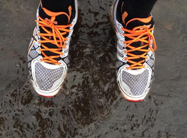 Some great  puddles out there today. Some of them where well over my shoes, unlike this measly one!